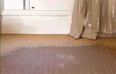 carpet flood restoration Denver Around The Clock Carpet & Upholstery Care